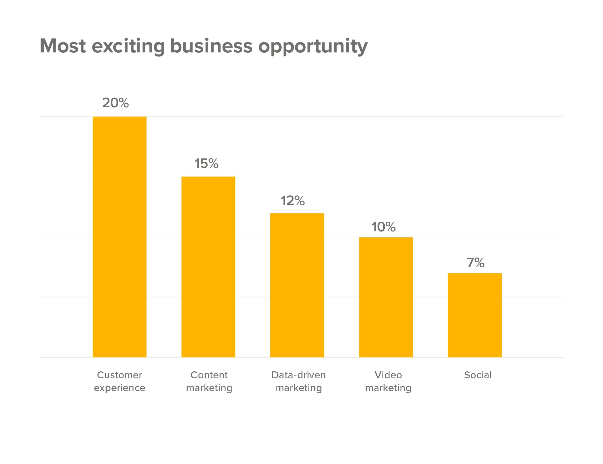 Most exciting business opportunity is customer experience