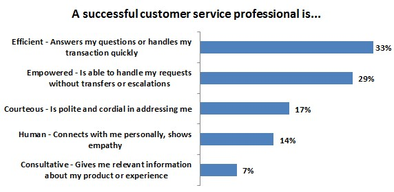 A successful customer service professional