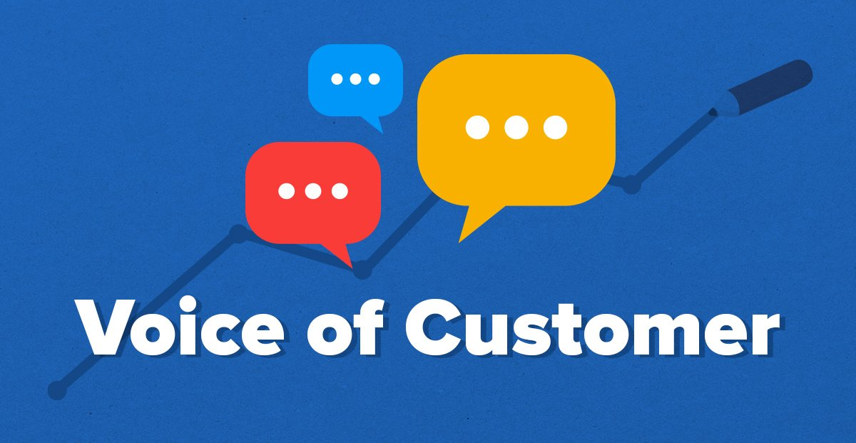 Voice of Customer: How to 10x Your Business With VOC Data