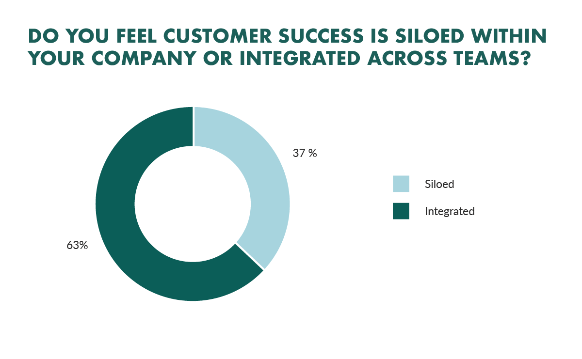 customer success adoption in saas
