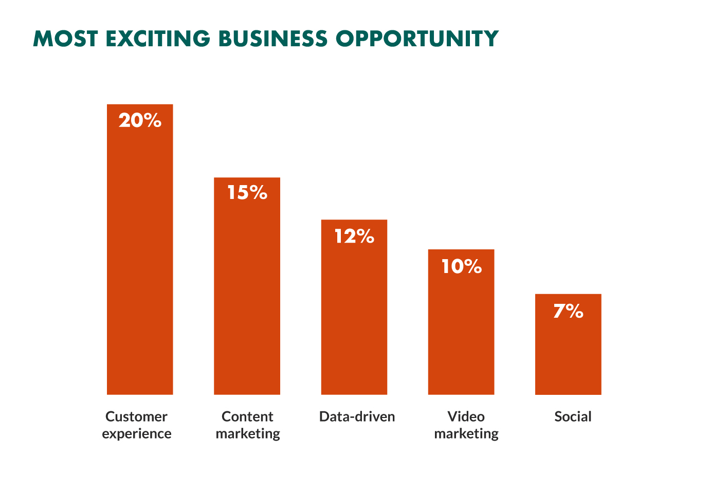 customer experience most exciting business opportunity