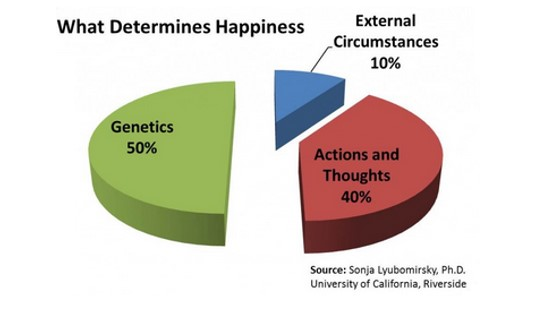 What determines happiness